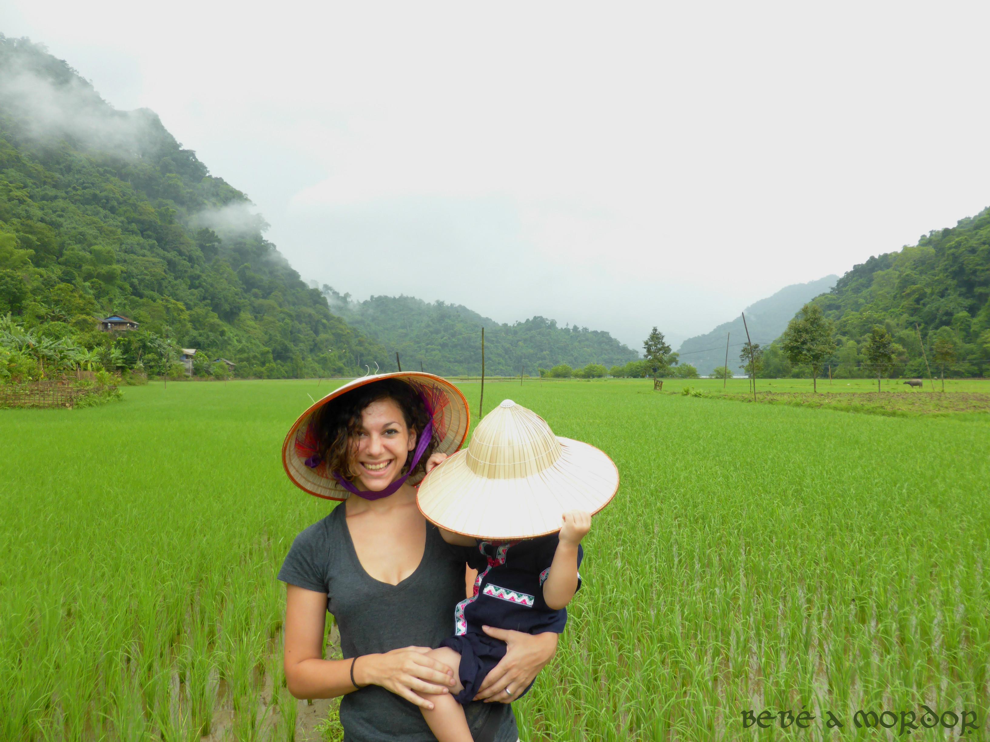 vietnam-bebe-arrozal-sombrero