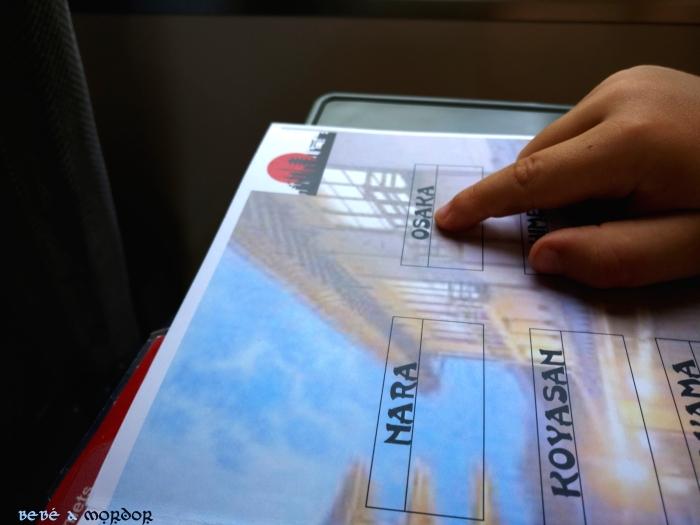 Pasaporte lúdico - tren